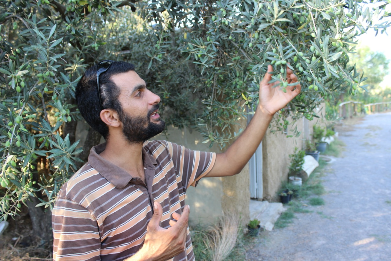 mornag-eco-farm-founder-amine-draoui
