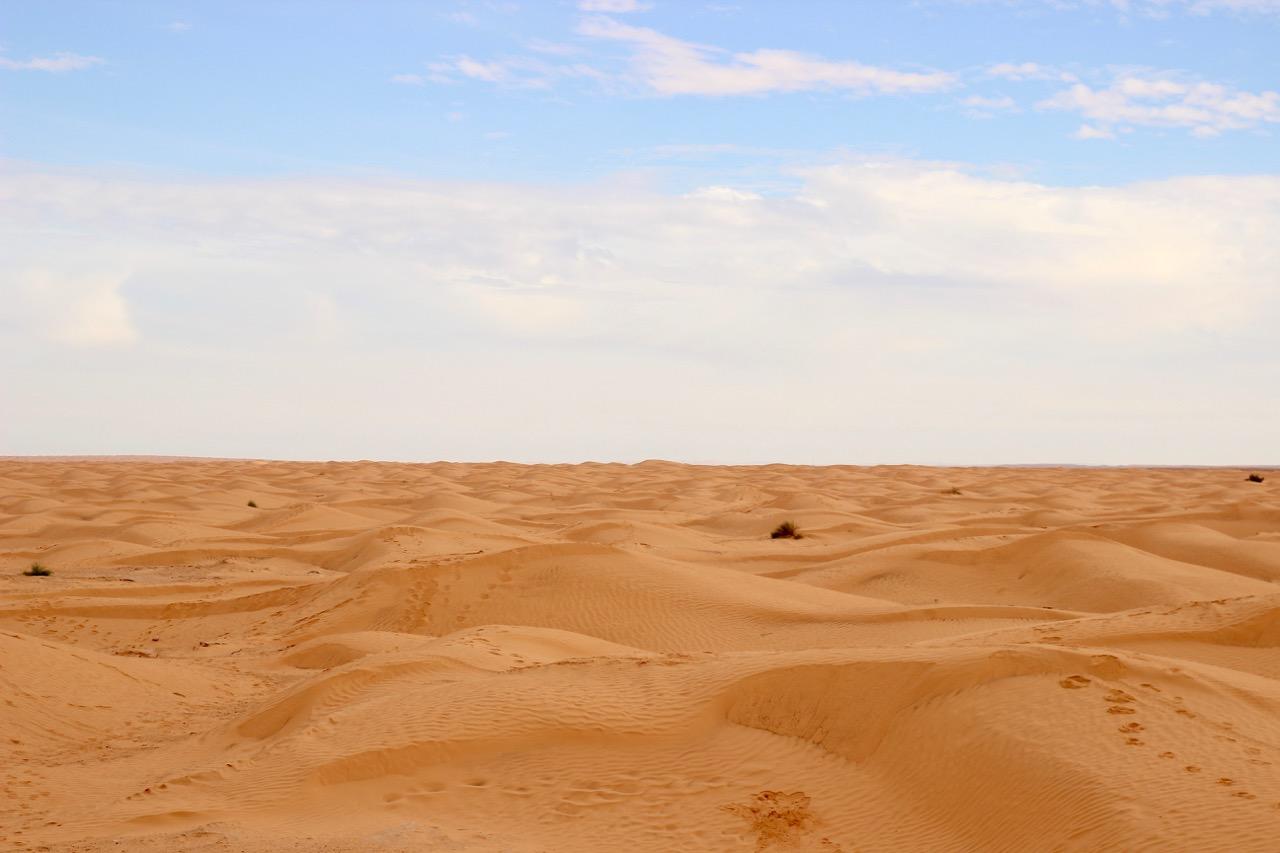 Celebrating the Desert in Ksar Ghilane